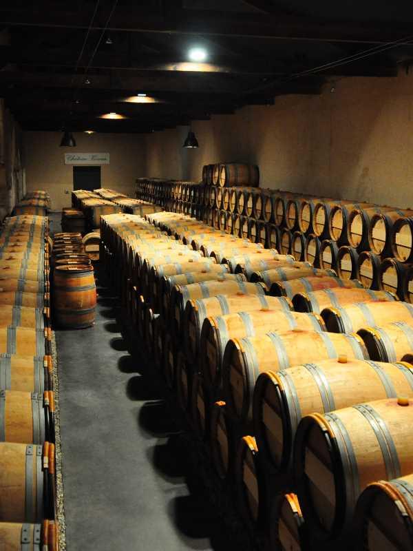 Виноделие и пивоварение
